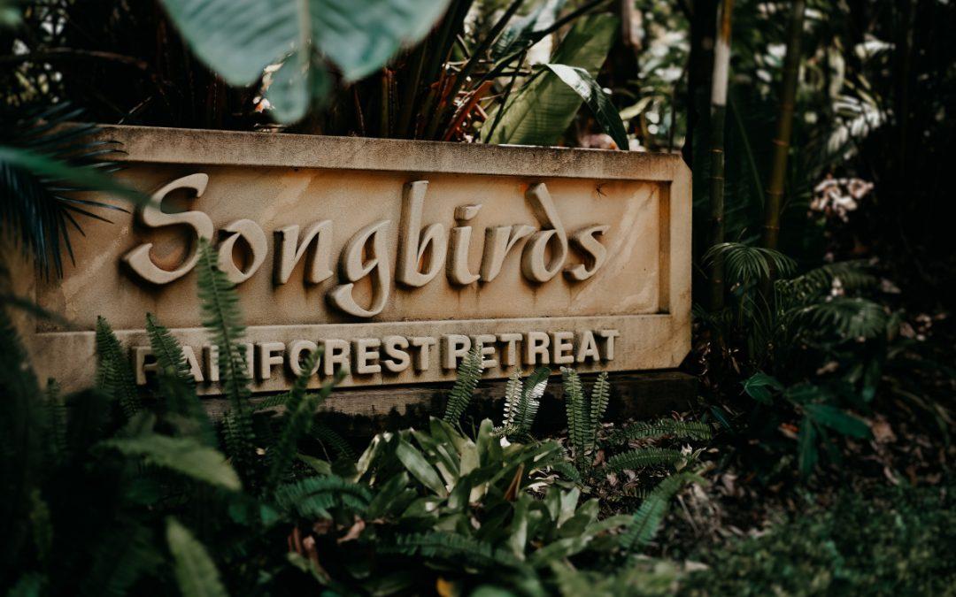 Rainforest Wedding