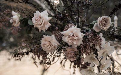 Florist | Gwen Floral Co
